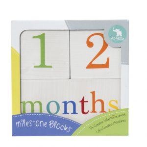 Milestone Blocks / Pregnancy Stickers / Journals / Keepsakes